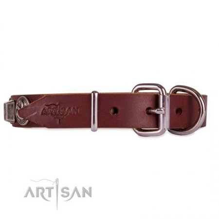 Luxury Brown Leather Dog Collar With Metal Buckle FDT Artisan