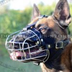 Belgian Malinois Muzzle | Wire Dog Muzzle Soft Padded