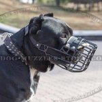 Special Rubberized Basket Dog Muzzle for Cane Corso