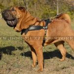 Padded Shar Pei Dog Harness for Tracking and Pulling
