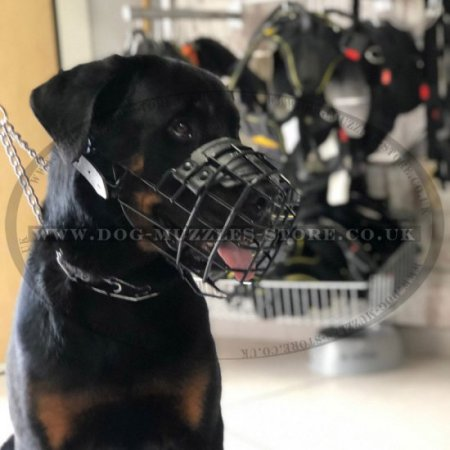 Muzzle for Rottweiler New Rubber Coated Model