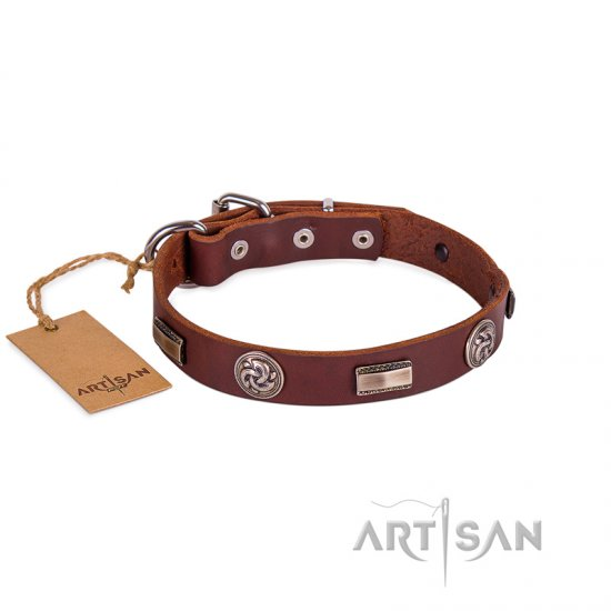 Functional Brown Studded Buckle Dog Collar FDT Artisan