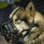 Soft Padded Dog Muzzle for Malamute and Husky