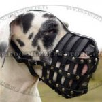 Great Dane Muzzle for Dog Walking | Leather Dog Muzzle