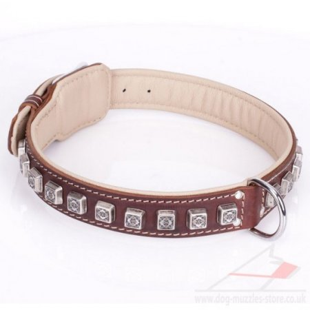 """Cube"" High-Quality Brown Leather Dog Collar With Adornment"