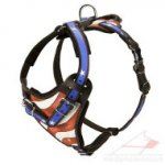Designer Dog Harness Painted | Handmade Dog Harness with Handle
