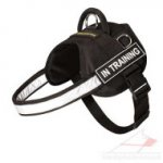 Light-Reflecting Heavy Duty Nylon Dog Harness with Handle