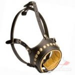 Best Leather Dog Muzzle with New Studded Design