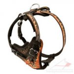 "Handmade Dog Harness ""Flame"" 