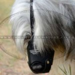Russian Shepherd Leather Dog Muzzle