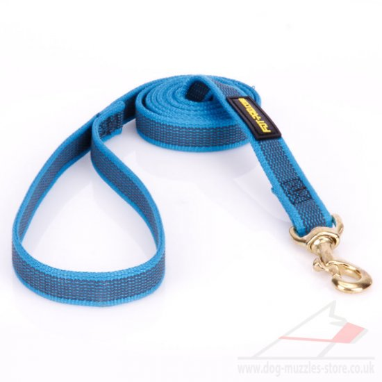 Strong Nylon Dog Lead UK