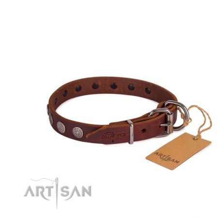 Handcrafted Brown Studded Buckle Dog Collar FDT Artisan