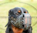 "Rottweiller Muzzle Leather ""Barbed Wire"" Design for K9 Dogs"