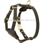 New Small Leather Dog Harness for Puppies and Small Dogs