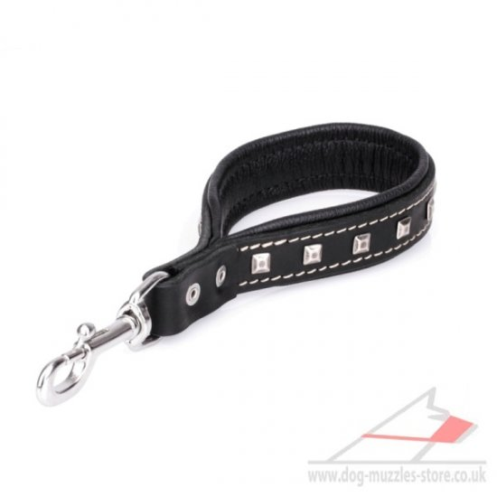 New Short Dog Leash with Chrome Plated Decorations