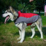 Siberian Husky Dog Jacket Waterproof and Warm Design