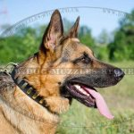 Thick and Strong Leather Dog Collar for German Shepherd