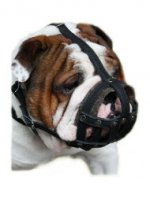 Bulldog Muzzles | English Bulldog Muzzle Leather Basket