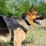 Durable Nylon Dog Harness for German Shepherd Training