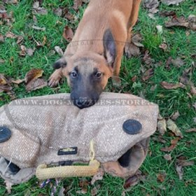 Jute Bite Wedge with Handles for Puppies and Young Dogs Biting