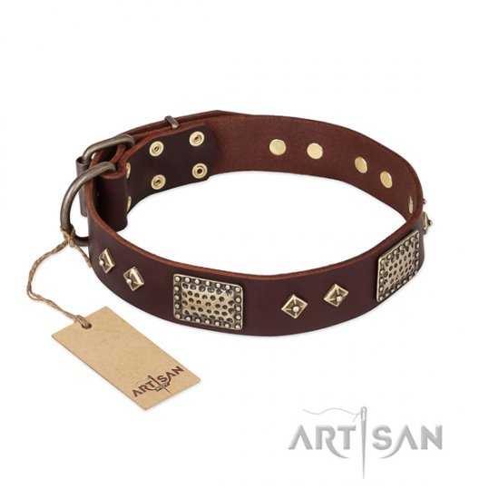 Great Leather Dog Collar with Decorations 'Loving Owner'