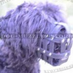 Soft Dog Muzzle for Black Russian Terrier | Leather Dog Muzzle