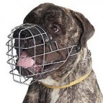 Large Bullmastiff Muzzle UK Wire Basket Individual Form, Padded