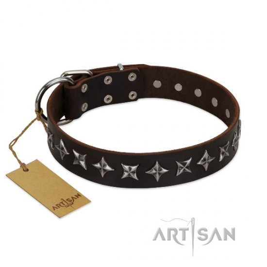 Durable Rock Star Dog Collars from FDT Artisan