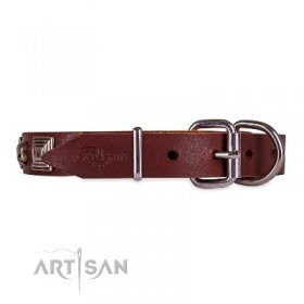Extravagant Brown Leather Dog Collar With ID Plate FDT Artisan