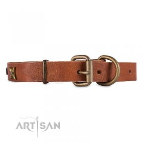 Excellent Natural Leather Dog Collar FDT Artisan Chic Design