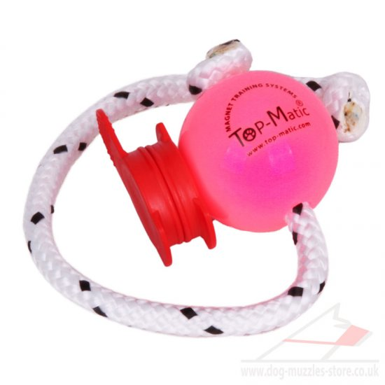 Motivating Top-Matic Ball UK With A Red MAXI Power-Clip