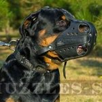 Strong K9 Rottweiler Muzzle for Training, Police and Service Dog