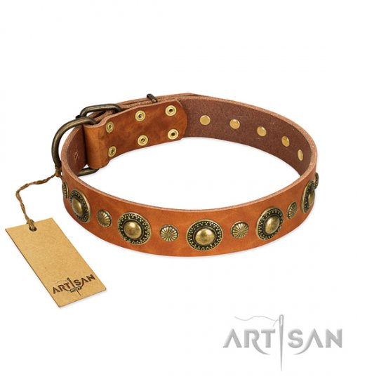 Handmade Studded Natural Leather Dog Collar by FDT Artisan