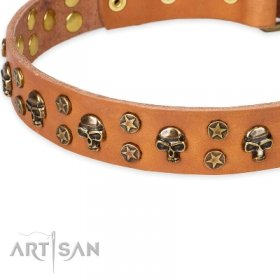 Appealing Natural Leather Dog Collar For Dog's Luxury Look