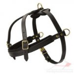 Weight Pulling Sport Dog Harness, Genuine Leather