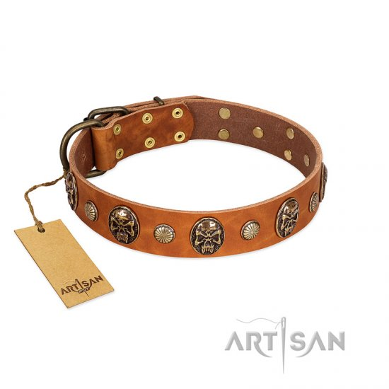 Tan Leather Dog Collar With Skulls
