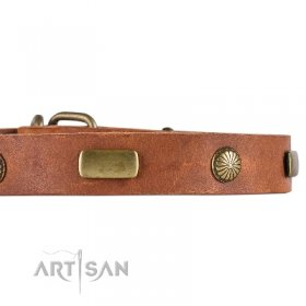Fancy Light Tan Leather Dog Collar With Adornment FDT Artisan