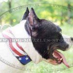 "Leather Dog Collars with Painting ""American Pride\"" for Amstaff"