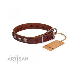 Adorable Dark Brown Leather Dog Collar With Skulls FDT Artisan