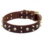 Exquisite Handmade Leather Dog Collar with Brass Spikes&Skulls