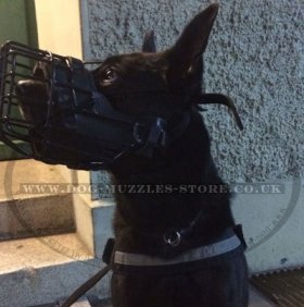 Muzzles for Big Dogs: Police K9 Agitation Muzzle