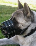Akita Training Leather Dog Muzzle | Husky Muzzles UK