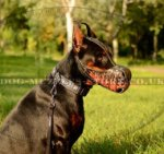 "Doberman Dog Training Muzzle K9 ""Flame"" Handpainted"