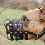 Soft Leather Padded Staffy Muzzle Size, Leather Basket