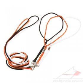 Nylon Rope Dog Leash and Collar All in One for Easy Control