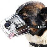 Buy Caucasian Shepherd Dogs Muzzles Individual Basket Form!