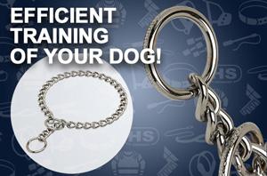 Puppy Training Tug