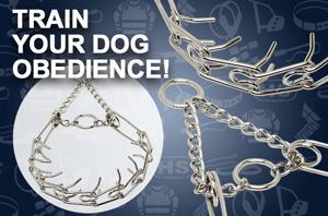 The Best Dog Training Equipment
