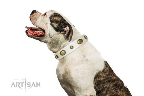 thick white dog collar Artisan for American Bulldog