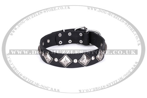 Artisan studded leather dog collar